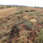 Erosion prevention on slopes