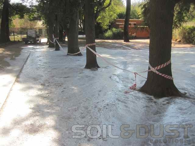 Parking Area Surfaced Sealed with EBS