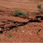 Wind and water erosion prevention