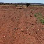 Stockpile dust prevention