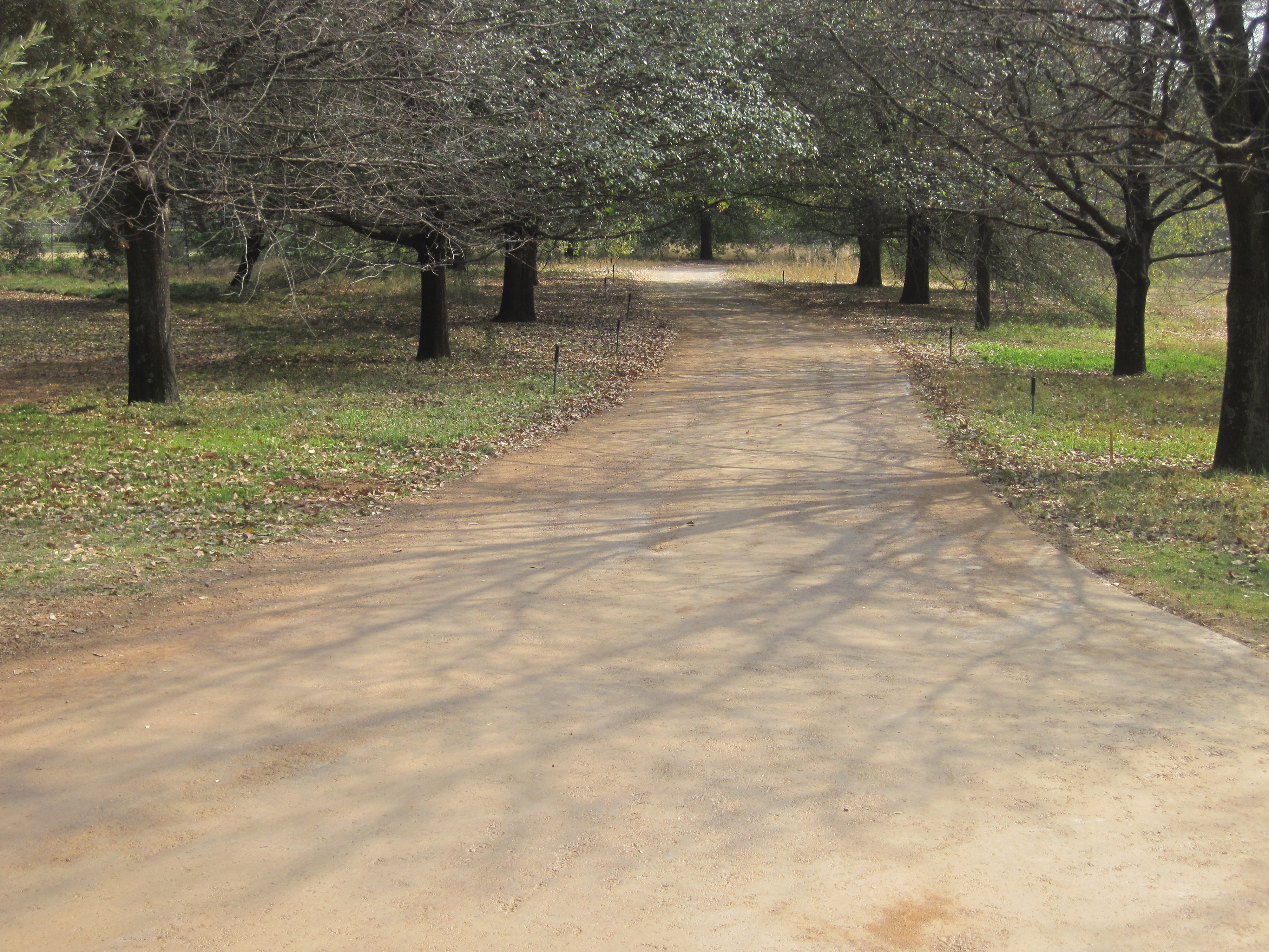 EBS Sealed Gravel Road