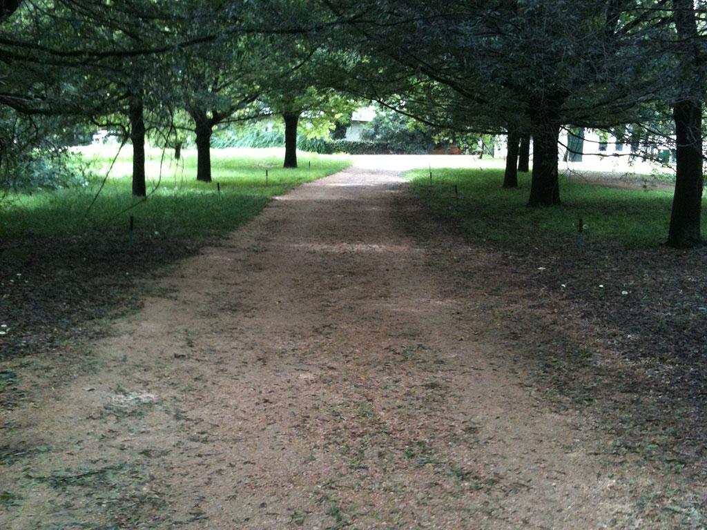 Unsealed Gravel Road